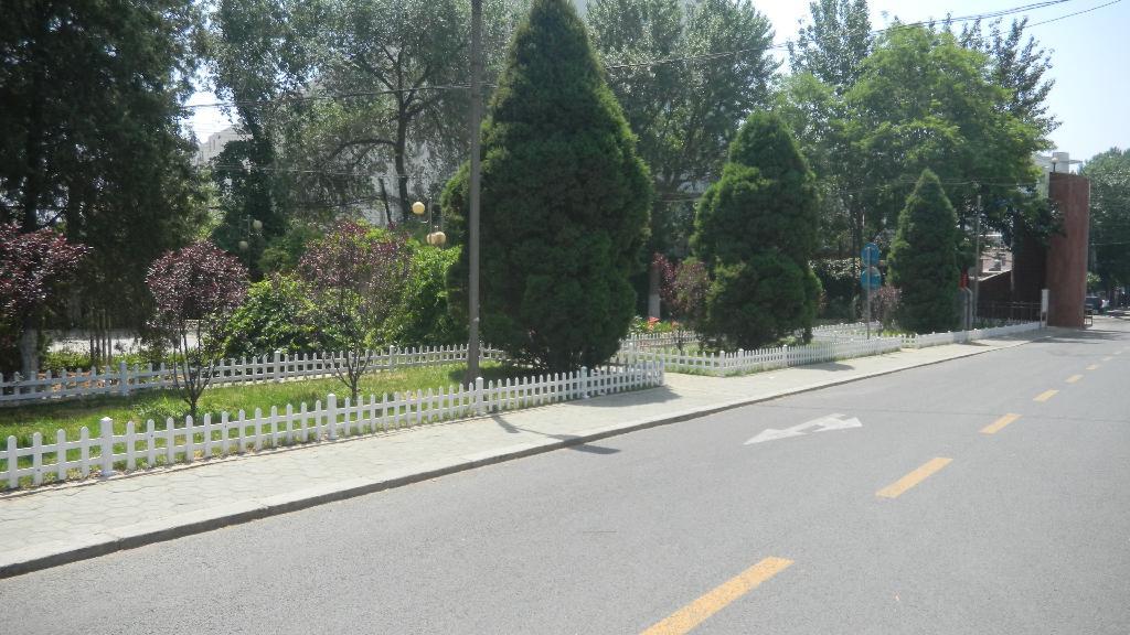 新建草坪围栏